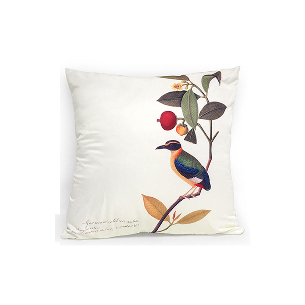 Cushion Cover (Pitta), William Farquhar